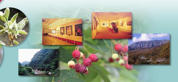 鳥取県 大山 観光 果物狩り フルーツ 有限会社大山光華園